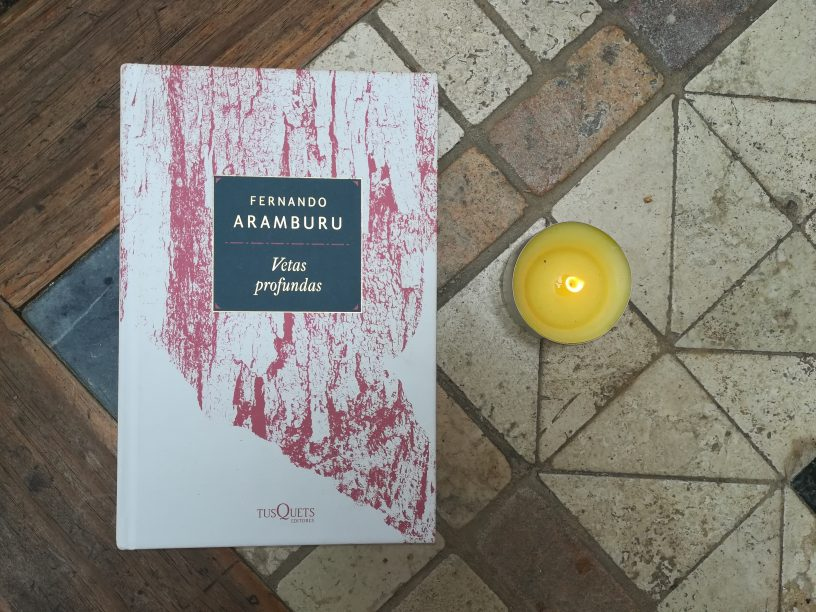 Vetas Profundas, de Fernando Aramburu