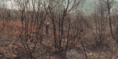Incendio Tasarte