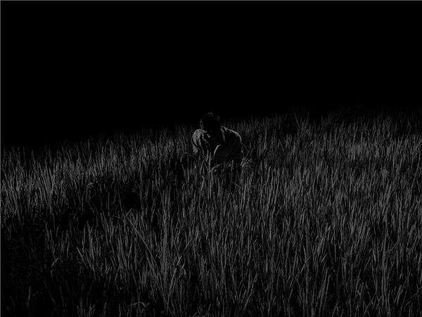 Scene 2233 crop